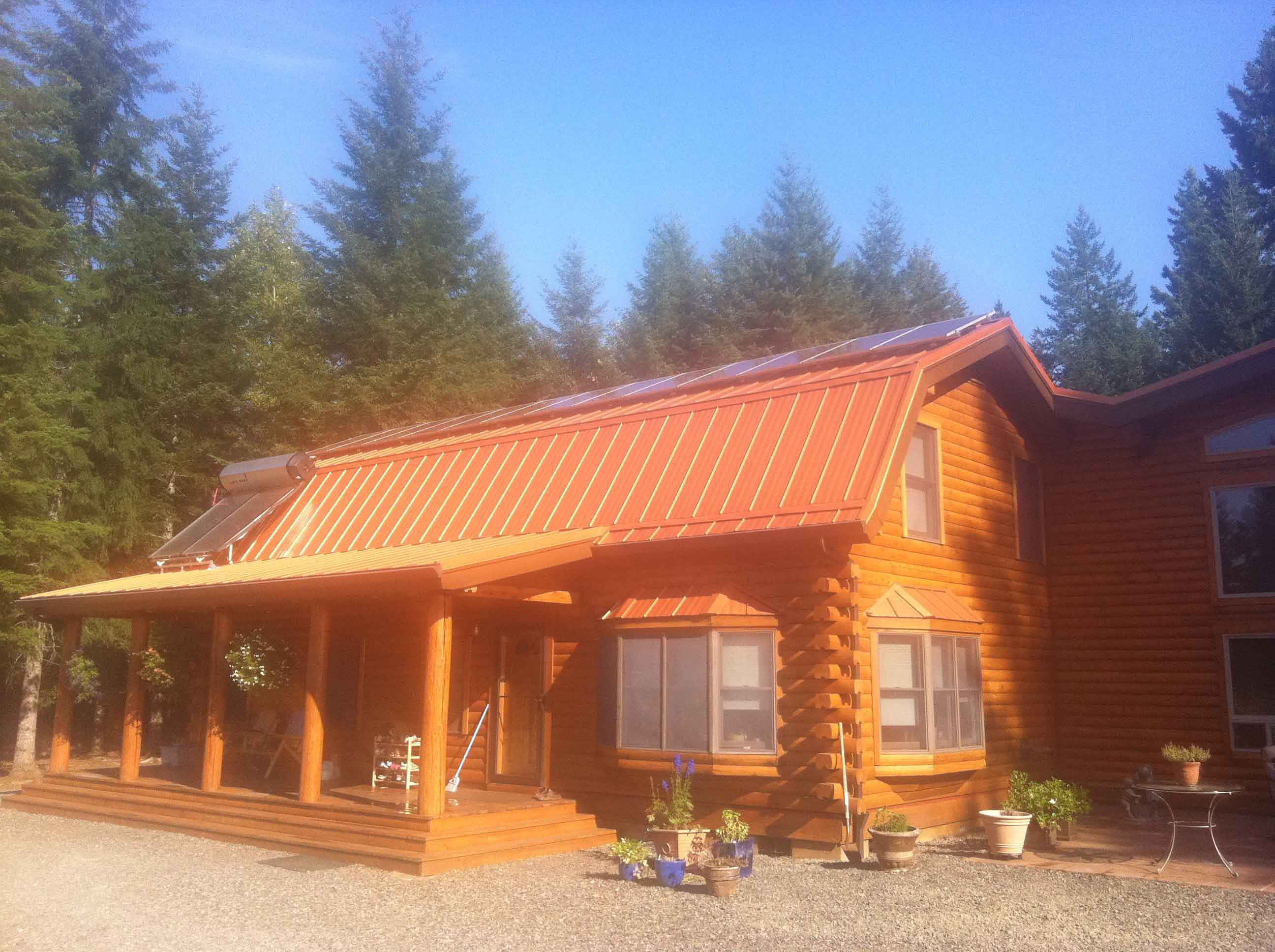 Copper Penny on Log cabin